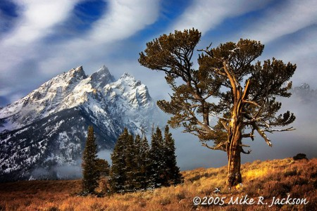 Best of the Tetons : Start Here!