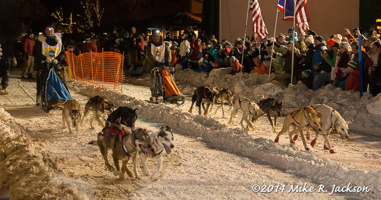 Web Sled Dog Race Jan31