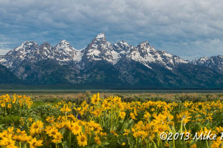 Summer in the Tetons and Jackson Hole