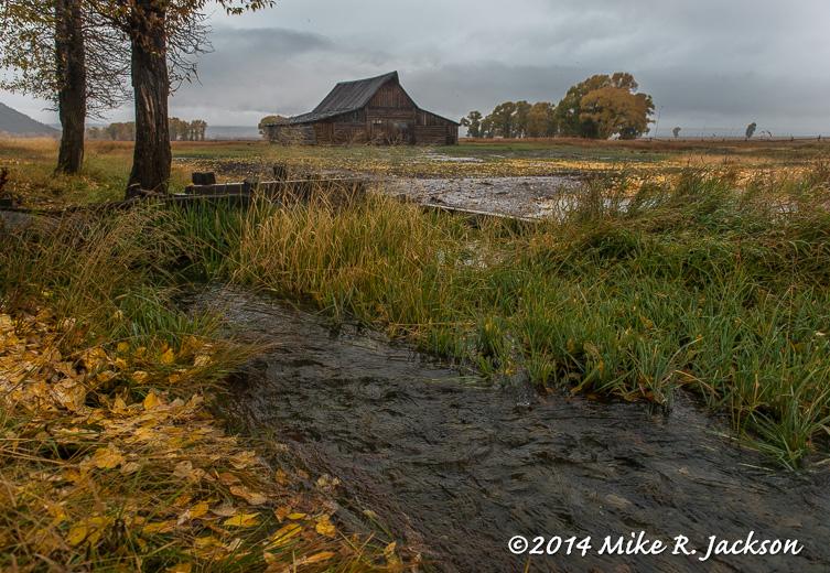 Fall at the Barn