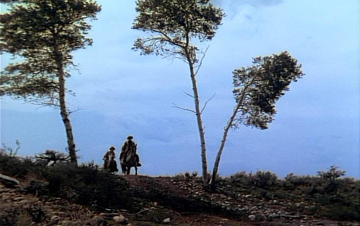 Three Tree Hill