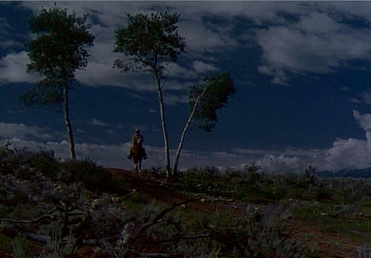 Three Tree Hill at Night