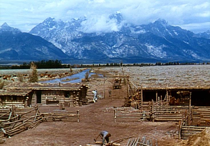 Ranch Shot