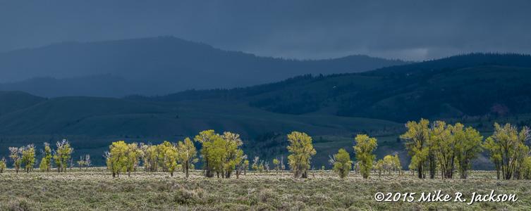 Gros Ventre Hills