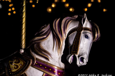 Teton County Fair 2015: A Photographer's...