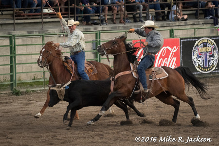 Rodeo – Saturday Night Action, Jackson...