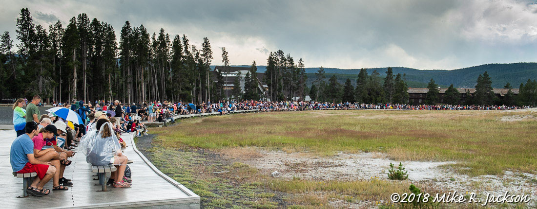 Old Faithful Spectators
